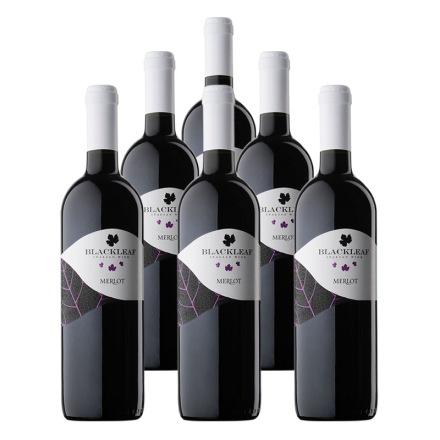 意大利拉提亚叶之藤梅洛干红葡萄酒750ml(6瓶装)