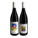 法国博若莱新酒(博勒治干红+圣维夫干红)