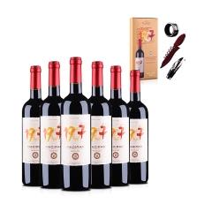 法国红酒套装原瓶进口AOC马蒂隆1907干红葡萄酒(6瓶装)+马蒂隆1907酒具三件套