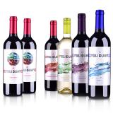 智利魅利缤纷葡萄酒6支套装