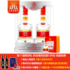 52°五粮液股份公司出品(2017年)富贵天下佳品白酒500ml*2礼盒装【第二对0元】