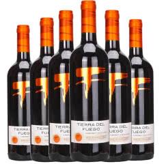 智利原瓶进口红酒 火地岛经典赤霞珠干红葡萄酒 750mlx6 整箱装