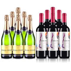 智利2019魅利干红葡萄酒750ml*6+法国梦幻之星半干起泡葡萄酒750ml*6